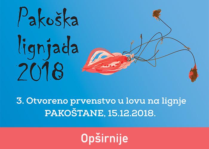 Croatie touristiques Pakostane Conseil - Pakostane Dalmatie Croatie